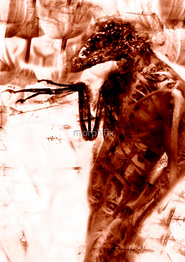 DREAM STEALER I by morphfix