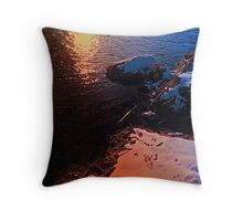 Winter evening down by the river | landscape photography Throw Pillow