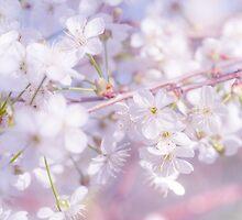 Spring Lightness  by JennyRainbow