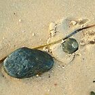 Beachcombing 3 by kimomalley