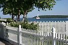 White Picket Paradise by John Carpenter