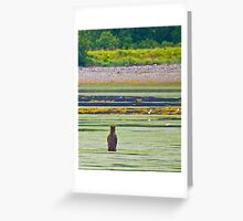 9 one thousand, 10 one thousand, ready or not, here I come! Greeting Card