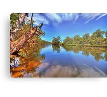 Swan River reflections Metal Print