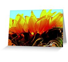 sun blessed flower Greeting Card