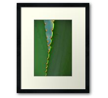 Along the edge Framed Print