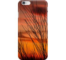 Orange sky with branches iPhone Case/Skin