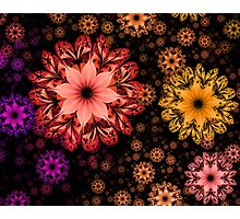Hands Full of Flowers Photographic Print