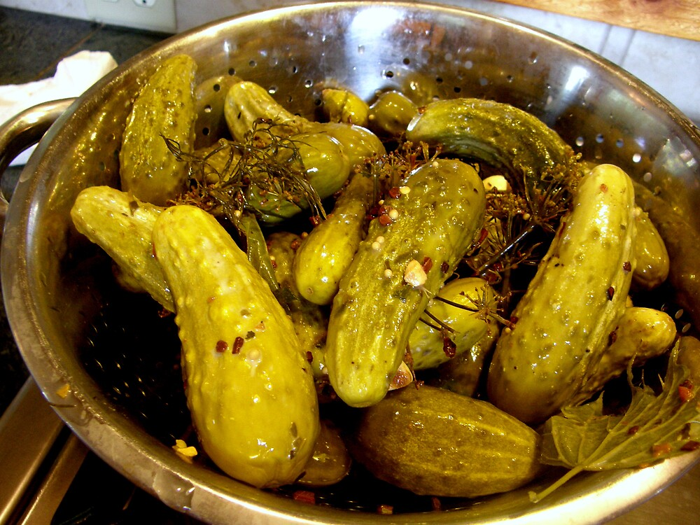 Homemade Pickles! by Melissa  W