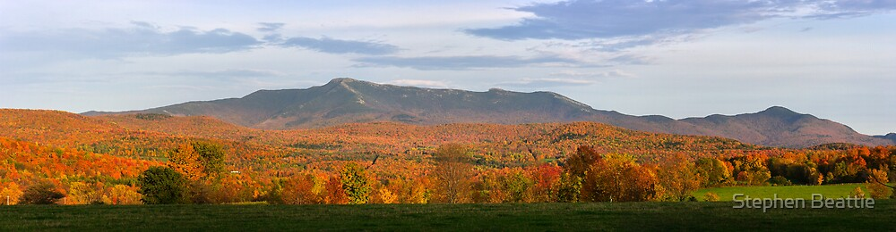 Mount Mansfield Foliage - Panorama by Stephen Beattie