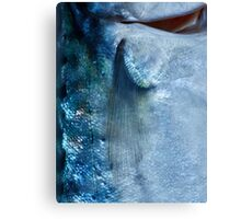 Fish Scales  Canvas Print
