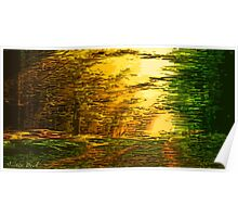 Picture 2015063 Justin Beck sunset in the Forest Poster