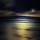 THE KISS OF THE MOON ON THE OCEAN by leonie7