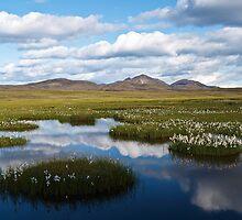 Iceland by thonycity