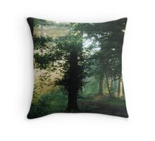 Let us go out and find the light Throw Pillow