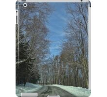 Desolation iPad Case/Skin