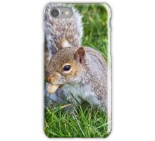 Snack Time For Squirrels iPhone Case/Skin