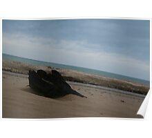 Slanted log on the beach Poster