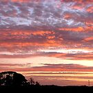 The Sky Is On Fire (Rhyll Philip Island)  by Emma  Pettis