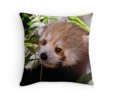 Red Panda.  Throw Pillow