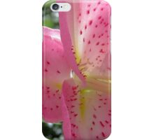 Lily Firework of Nature iPhone Case/Skin