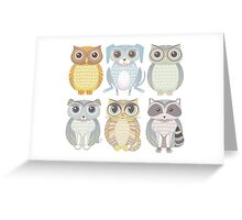 Owls, Dogs, Cat, Raccoon Greeting Card