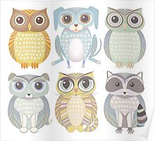 Owls, Dogs, Cat, Raccoon Poster