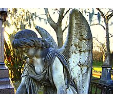 finite angel 3 Photographic Print