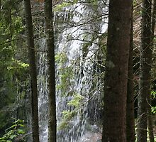 Fundy Trail Waterfall by Nunavutguy