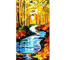 Autumn Stream Photographic Print