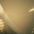 Sunlight Sing To Me by Ellie Niemeyer