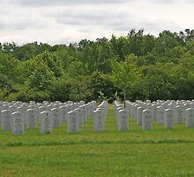 Military Cemetery by Karl R. Martin
