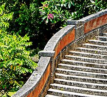 Vizcaya stairs by cromagnon