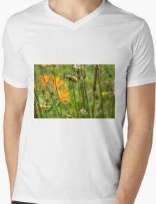 332015 honey Mens V-Neck T-Shirt