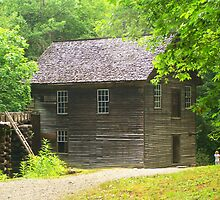 Mingus Mill in Color by Lisa Taylor