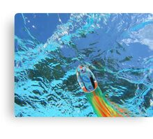 BILLFISH TEASER Canvas Print