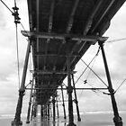 Saltburn Pier by acespace