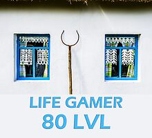 Life gamer 80 level by luckypixel