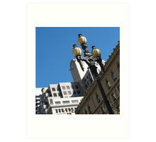 San Francisco - city  Art Print