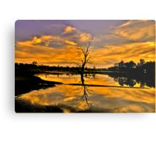 Wetland Dreaming - Wonga Wetlands, Albury NSW - The HDR Experience Metal Print