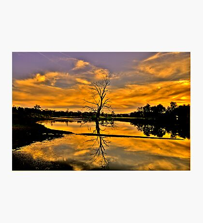 Wetland Dreaming - Wonga Wetlands, Albury NSW - The HDR Experience Photographic Print