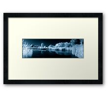 Wetland Pond in IR Framed Print