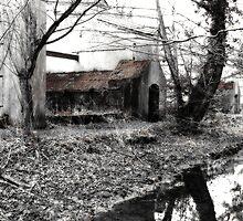 Chilworth Gunpowder Mills by Colin  Williams Photography