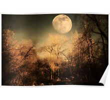 Dark Trees and Moon Poster