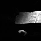 light music by Colinizing  Photography with Colin Boyd Shafer
