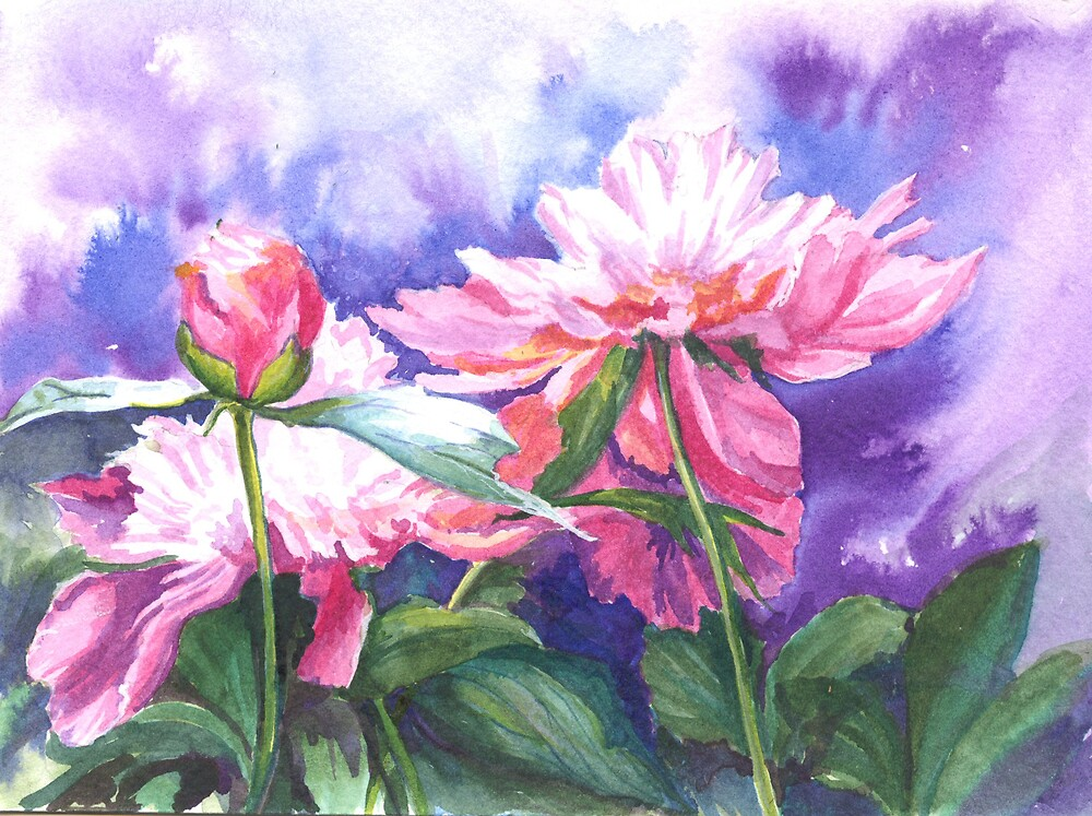Sunlit Paeonies by Maureen Whittaker