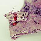 Red Bleeding by mayschneider