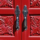 I  see a red door  by Tracey Hampton