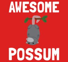 Awesome Possum 2 Kids Clothes