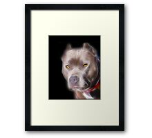 America's Hero Framed Print