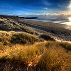 Freshwater West Pembrokeshire by Mark Guest